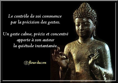 zen-quietude-du-geste-