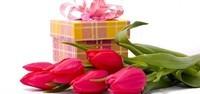cadeautulipes