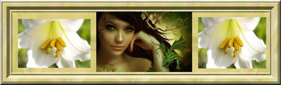 ban fleur blanche-