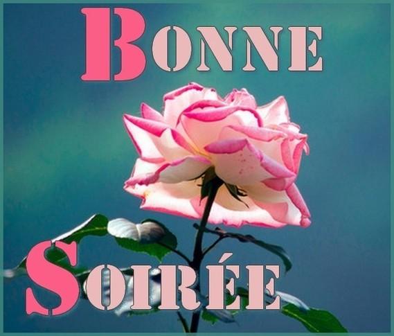 bonne soirée rose - images 1 - di-ange - Photos - Club Doctissimo