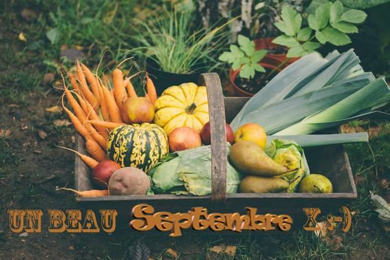 jardin-en-septembre-2