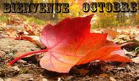 automne feuille bienvenue