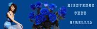 bouq roses1