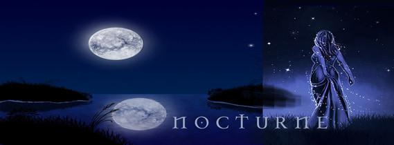 nocturnebanbleunuit1a