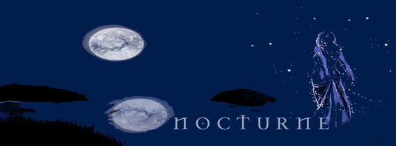 nocturnebanbleunuit2