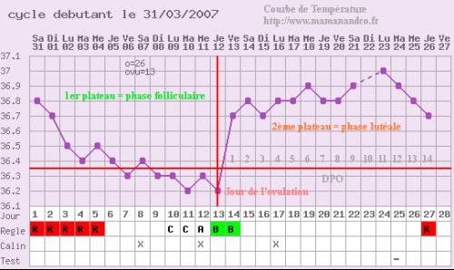 Inqui tude courbe de temp rature mamans ados forum grossesse b b - Temperature ideale chambre enfant ...