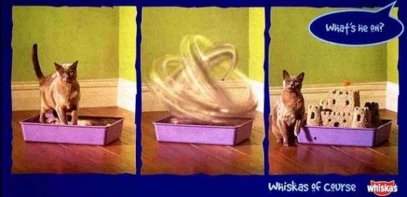 whiskas-cat-food-castle-cat-small-25144