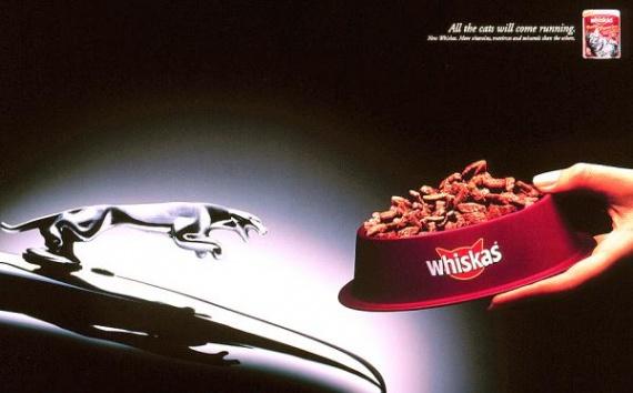 whiskas-cat-food-jaguar-small-58446