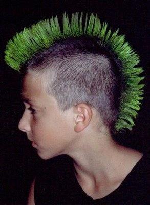 Coupe mohawk iroquois coiffure et coloration forum for Coupe de cheveux punk iroquois