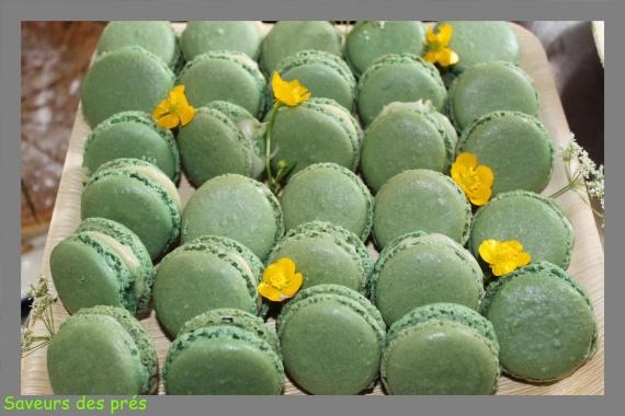 Macaron thé vert