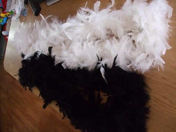 guirlande plumes
