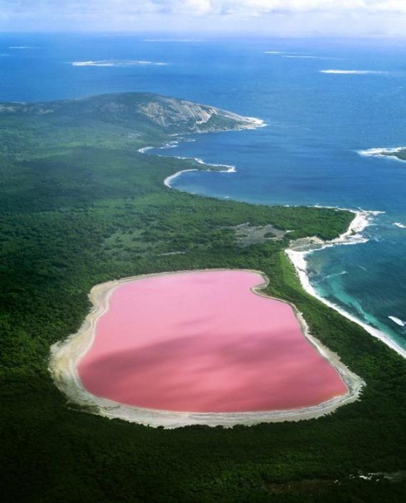 Le-lac-rose---Australie-jpg_141941