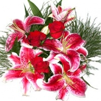 fleurs_232