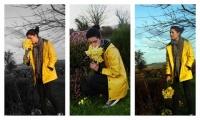DaffodilDayCollage