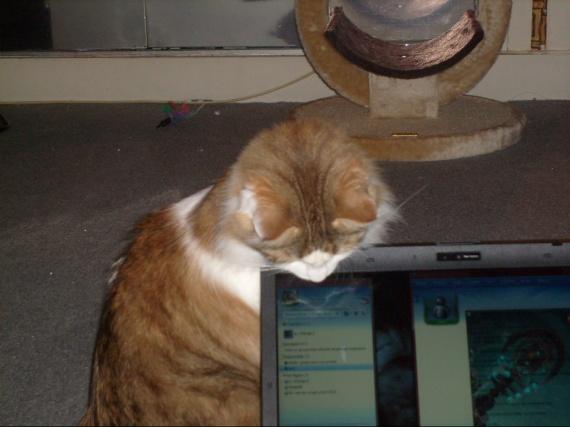 missgranger 13 decembre 2009 001