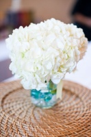 fleurs banc hortensia blanc