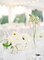 fleurs blanc divers