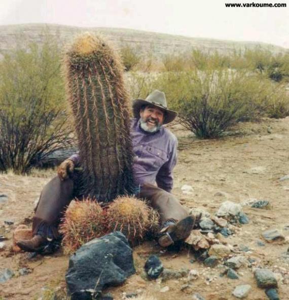 Les souhaits du bon Roi Image-drole-cactus-img