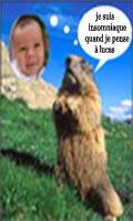 lucasmarmotte4