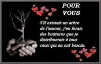038_bouturesd_amour