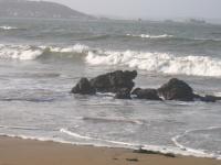 Hein c'est pas beau les vagues ?