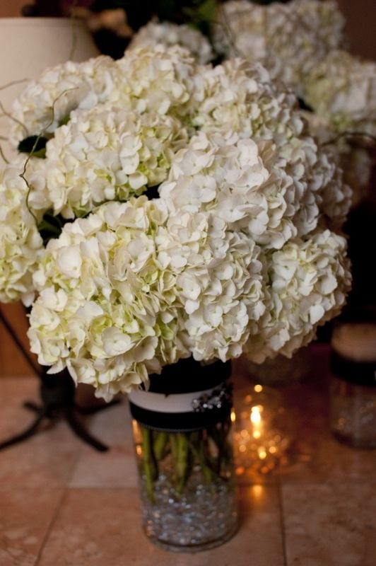Hortensia - Déco mariage - yttreza - Photos - Club Doctissimo