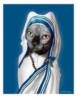 Mère chat