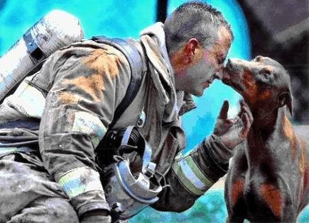pompier + chien