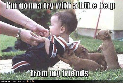 cute-puppy-pictures-helping-baby