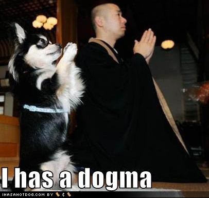 funny-dog-pictures-praying-dogma