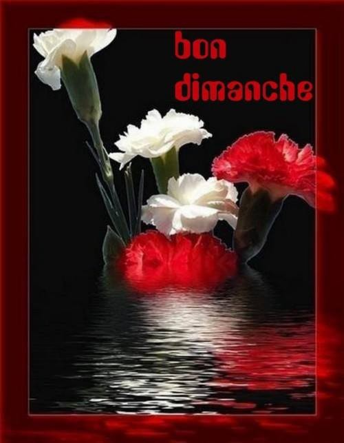 souhaits-i​mages-dima​nche-img