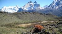Torres del Paine, les Cuernos