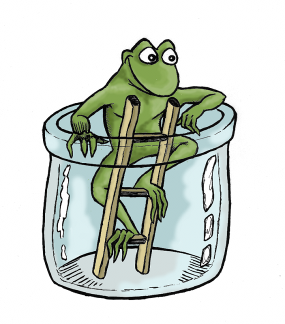 divers-grenouille-img