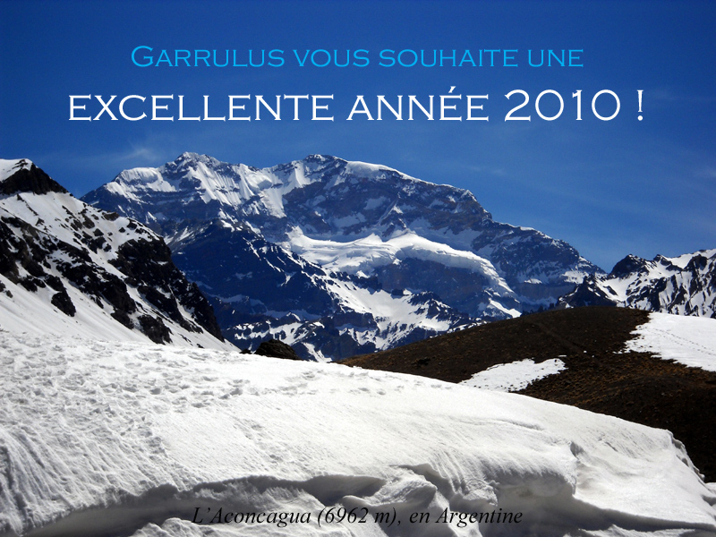 Voeux-Docti-2010