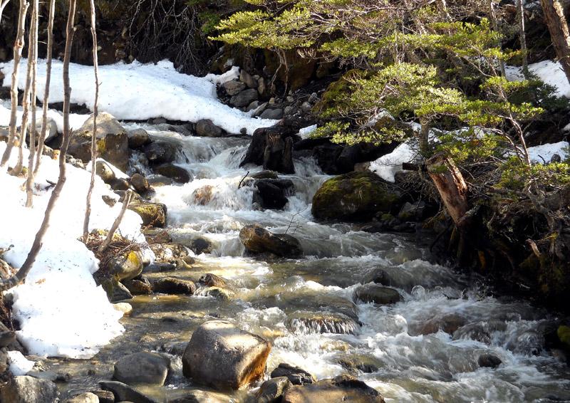 Ruisseau de montagne près d'Ushuaia