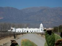 Cafayate - Une bodega (domaine viticole) à l'entrée de la ville