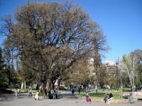 Mendoza - Plaza Independencia