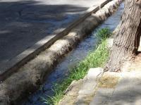 Mendoza - Les acequias, système d'irrigation