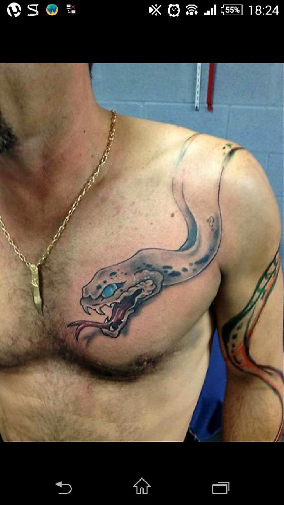 douloureux tatouage bras+pectoraux - tatouages et piercings - forum