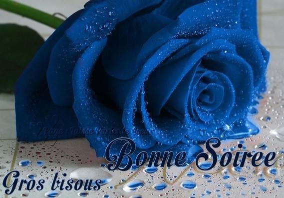 bonne-soiree_131
