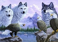 berg,-vita-vargar,-ornar,-sjo-157712
