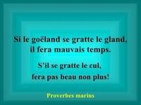 faux-proverbes-8-728