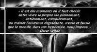 ob_09a6ef_la-vache-rose-oscar-wilde-31