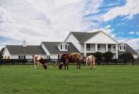 southfork-ranch-serie-dallas-une