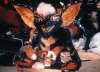 Gremlins-Arte-l-origine-etonnante-du-nom-des-creatures-Photos_exact1024x768_l