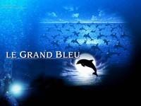 Grand-bleu-2