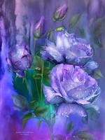 raindrops-on-lavender-roses-carol-cavalaris