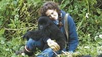 Gorilles dans la brume (18)