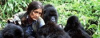 Dian Fossey (4)