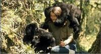 Dian Fossey (2)